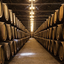 Como funciona o processo de evolução de um vinho?