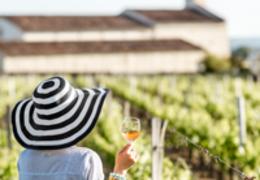 Saiba tudo sobre o vinho rosé: o queridinho do momento!