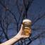 Oktoberfest: descubra o que é essa festa e por que ela é imperdível!