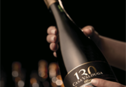 Conheça os vinhos premiados da Casa Valduga!
