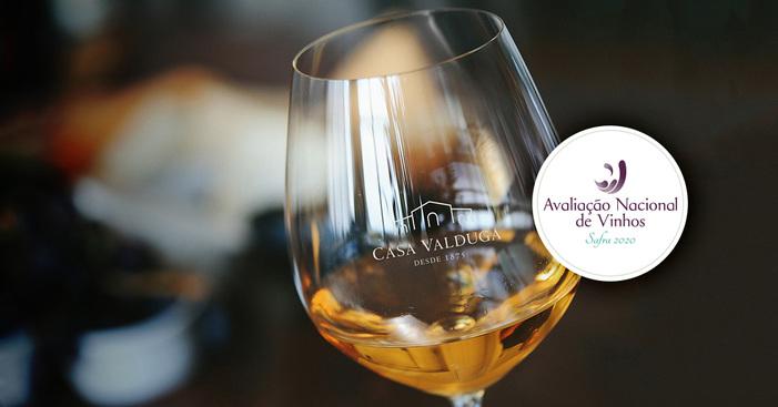 Casa Valduga é premiada na Avaliação Nacional de Vinhos