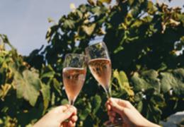 Descubra porque você deveria visitar uma vinícola nas próximas férias