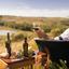Dicas para harmonizar o azeite de oliva extra virgem com vinho