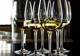 Conheça a Sauvignon Blanc e as suas principais características