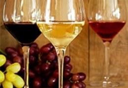 Afinal, o que são castas de uva?