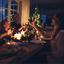 4 dicas de harmonização de vinhos e carne branca para a ceia de natal
