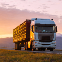Alinhamento de caminhão: como influencia no desempenho do veículo?