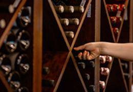 Guia completo para montar uma adega de vinhos em sua casa