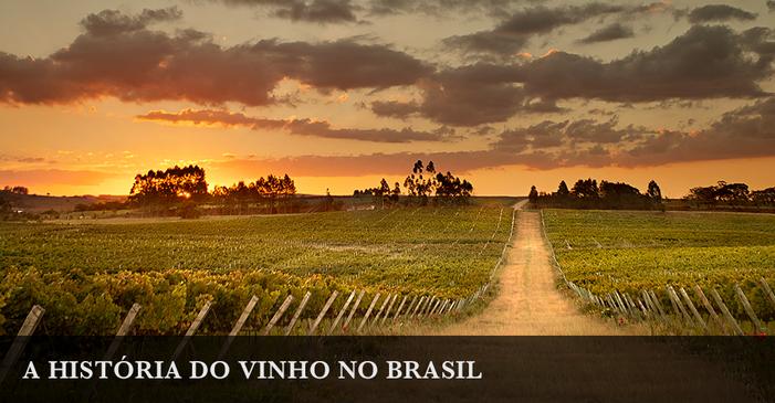 A história do vinho no Brasil: conheça a trajetória da bebida em território nacional
