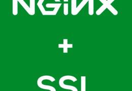 Configurando SSL com Nginx