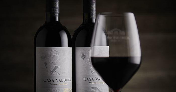 Como saber qual estilo de vinho que mais combina comigo?