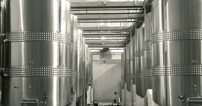 Elaboração do vinho: como acontece a fermentação da uva?