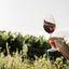 Taça de vinho personalizada: confira algumas ideias!