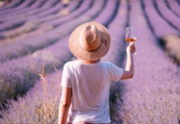 Vinho rosé: entenda mais sobre a elaboração e porque sua acidez é tão importante
