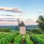 Paladar refinado: confira nosso guia completo de vinhos franceses!