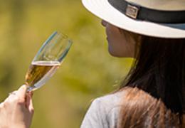 Conheça os 9 melhores vinhos para tomar na primavera